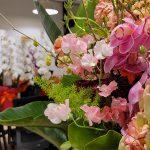 Dreamcloud  Holdingsの本社移転祝いにたくさんのお花や植物を頂きました!